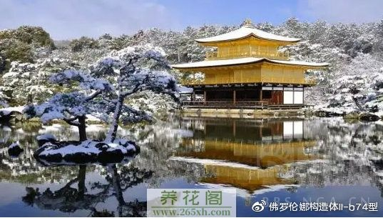 雪中金阁寺是游人可遇不可求的佳景